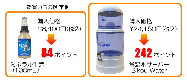 ポイント還元・お買い物例(650-280)